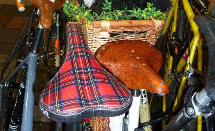 Tartan saddle